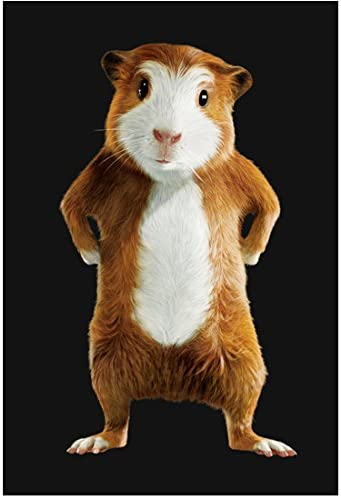 G Force 2009 8 Inch X10 Inch Photo Darwin Paws On Hips Kn At Amazon S Entertainment Collectibles Store
