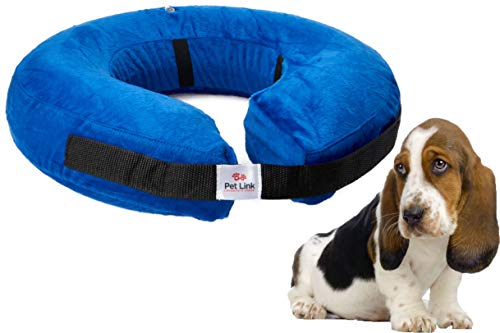 Inflatable Dog Collar Recovery
