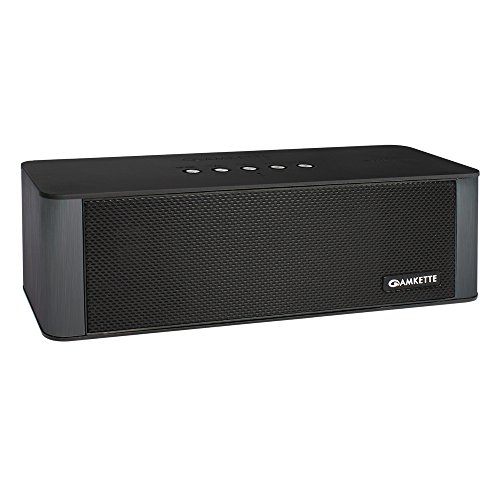 Amkette Trubeats Smart Wireless Speaker and Home Audio Hub S50