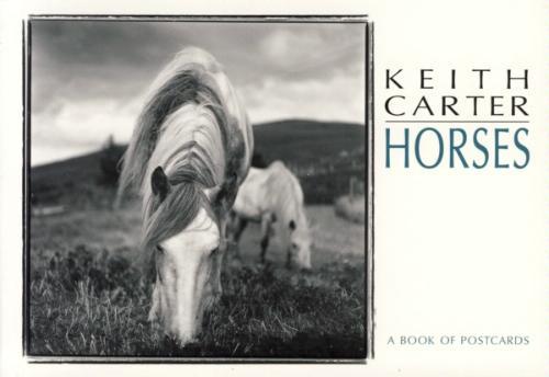 Download Horses: A Book of Postcards PDF