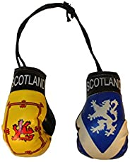 SCOTLAND : Lion Rampant & St. ANDREW Cross With Lion Country Flags Mini BOXING GLOVES.