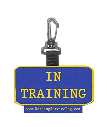 Sided Training Identification Patch Tag