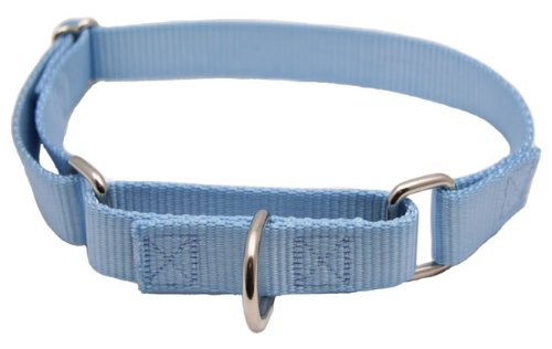 Country Brook Design® Baby Blue Medium Martingale Heavyduty Nylon Dog Collar