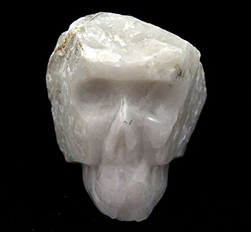 White Quartz X Large Raw and Polished Skull 6 Kilo 8'' Size by Gifts and Guidance