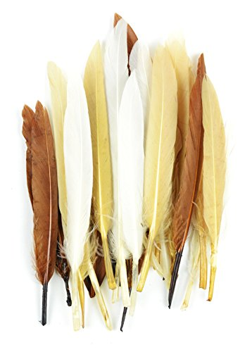 Indians Authentic Mini - Touch of Nature 24-Piece Mini Indian Feathers for Crafting, 3-Inch, Earth Mix,