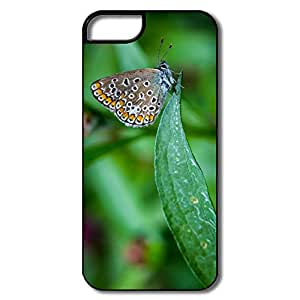 Design Butterfly Leaf Movies IPhone 5 5s Skin For Gift