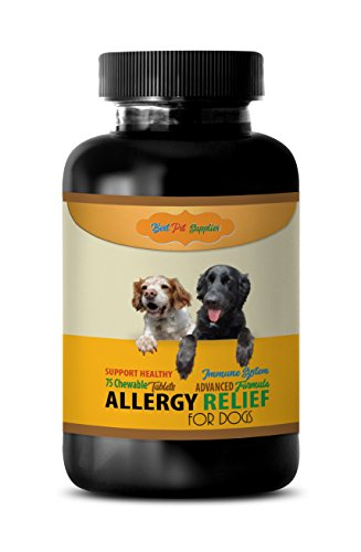 BEST PET SUPPLIES LLC Dog itching Skin Relief Supplements – Advanced Allergy Relief – for Dogs ONLY – Healthy Immune Response – CHEWABLE – quercetin for Dogs – 75 Chews (1 Bottle)