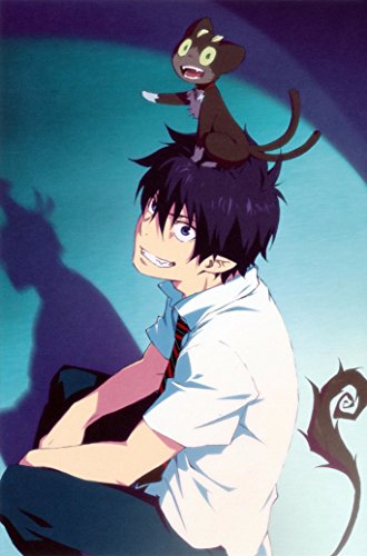 Blue Exorcist Anime Fabric Poster  Inches