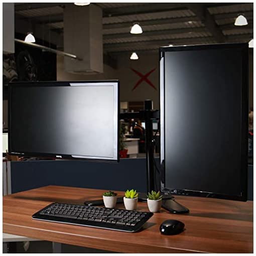 """Fully Adjustable Dual Monitor Stand 