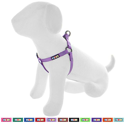 Pawtitas Solid Color Step in Dog Harness or Vest Harness Dog Training Walking of Your Puppy Harness Extra Small Dog Harness Orchid Purple Dog Harness