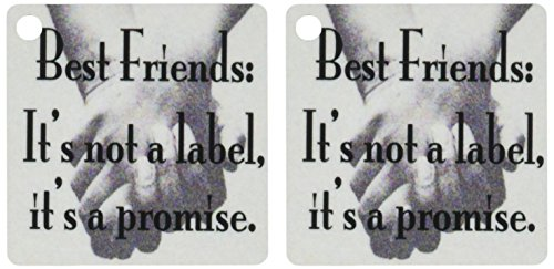 3dRose Best friends its not a label its a promise - Key Chains, 2.25 x 4.5 inches, set of 2 (kc_171939_1)