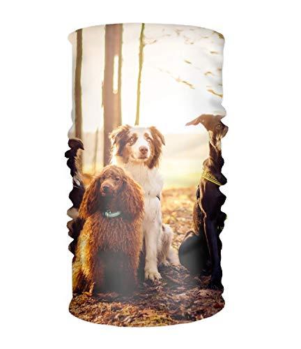 (Animal Dog Border Collie Terrier Australian Shepherd Poodle German Multifunctional Seamless Neck Gaiter, Headwrap, Balaclava, Helmet Liner )