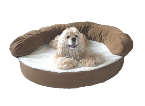 CPC Ortho 35-Inch Sleeper Bolster Bed, Chocolate, My Pet Supplies