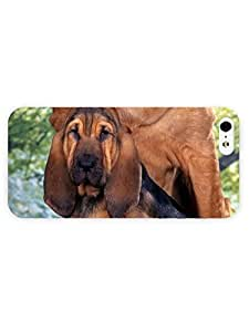 3d Full Wrap Case for iPhone 5/5s Animal Bloodhound71