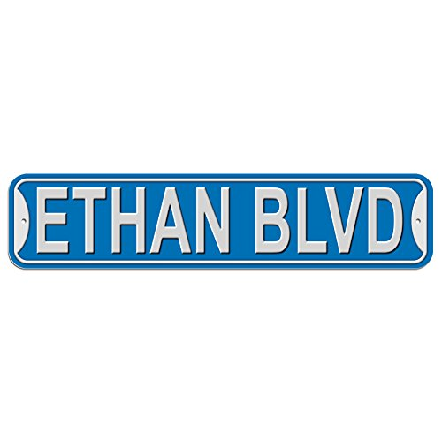 Ethan Blvd Boulevard Sign - Plastic Wall Door Street Road Male Name - Blue