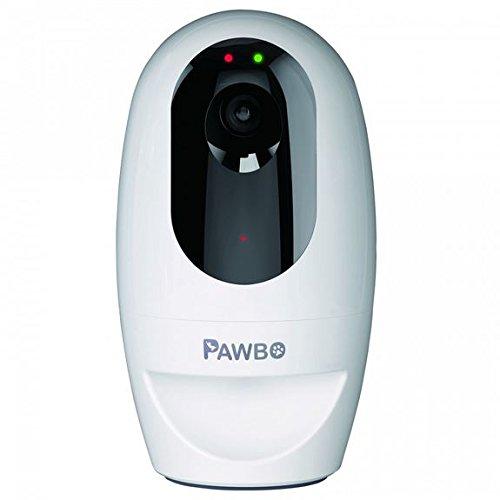 Acer PAWBO+ Cámara Inalámbrica Interactiva para Mascotas, Blanco ZL.X01TE.00S
