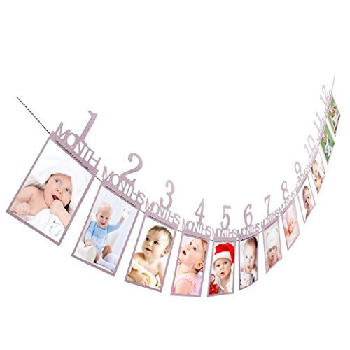 Coohole 1-12 Month Photo Banner Monthly Photo Wall Kids Birthday Gift Decorations (Purple)