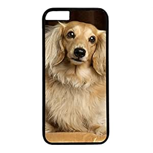 Hard Back Cover Case for iphone 5s,Cool Fashion Black PC Shell Skin for iphone 5s with Cute Dog