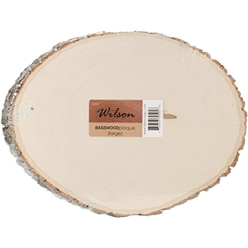 Basswood Plaque (Round/Oval) Bulk Quantity Value Box (Large (9''-12'' Diameter) Pack of 10) by Wilson Enterprises (Image #1)