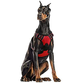 "rabbitgoo Dog Harness, No-Pull Pet Harness with 2 Leash Clips, Adjustable Soft Padded Dog Vest, Reflective No-Choke Pet Oxford Vest with Easy Control Handle for XLarge Dogs, Red (XL, Chest 20.3-39.6"")"