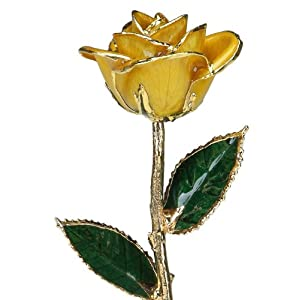 Yellow Laquered 24k Gold Dipped Long Stem Genuine Rose In Gift Box 23