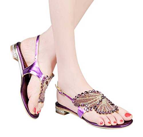 02 Buckle purple Flat Sandals Classic Women's Rhinestone pu Fashion Thong Design zS8nO8P