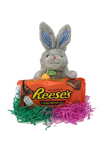 Easter Bundle 2 Half Pound Reese's Cup chocolate giant size candy bars Bundled with Gray Easter Bunny