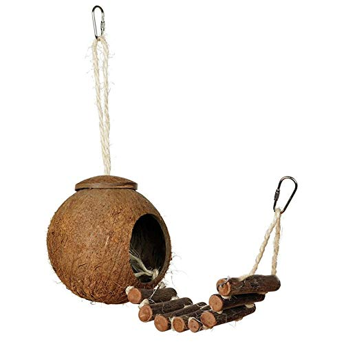 Appearanice C/ómodo dise/ño Lindo Concha de Coco Natural Casa de anidaci/ón de Aves Periquitos para Mascotas de tama/ño peque/ño Pinzones Gorriones Jaula con Escalera Color Madera