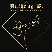 King In My Castle [VINYL]