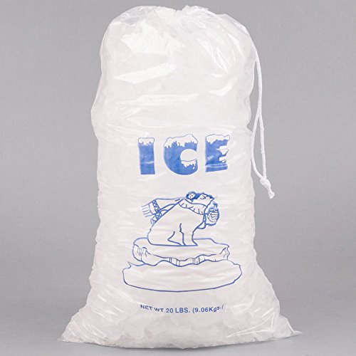 20 lb. Clear Plastic Drawstring Ice Bag with Polar Bear Graphic - 250/Case