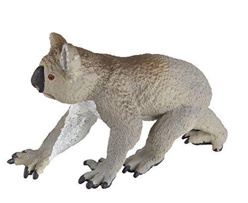 Safari Koala (Wild Safari Sea Life: Koala)