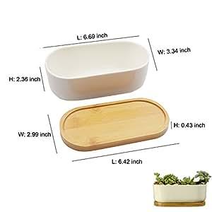 Contenedor de planta de cerámica color blanco con de bambú plato, maceta suculentas perfecto para en su casa o oficina decoración de mesa.