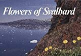 Flowers of Svalbard, Olav Gjoerevoll and Olaf I. Ronning, 8251915295