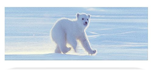 Animated Ruler - Animated Polar Bear Cub Bookmark with Ruler - by Emotion Gallery