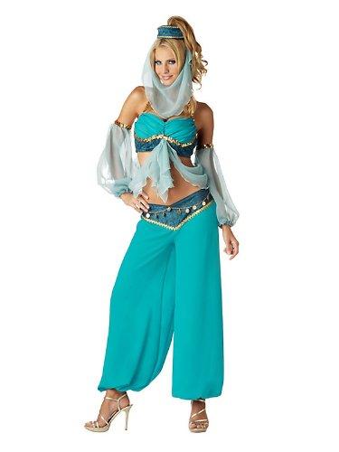 Harem's Jewel Costume - Medium - Dress Size 6-10 (Harems Jewel Elite Collection Adult Costume)