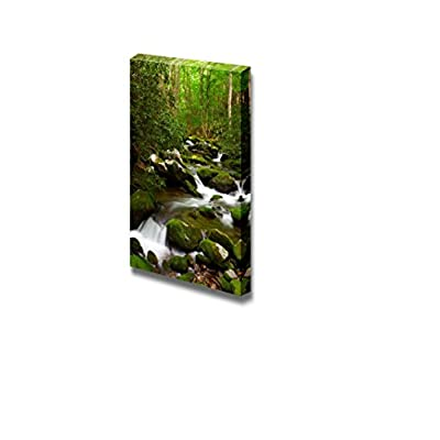 Beautiful Scenery Landscape Stream Moving in The Forest Over Mossy Rocks - Canvas Art Wall Art - 24