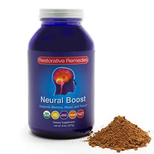 neural-boost-3-in-1-organic-brain-food-supplement-for-memory-mood-focus-vegan-paleo-chocolate-coconu