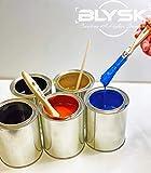 Blysk Empty Metal Quart Cans