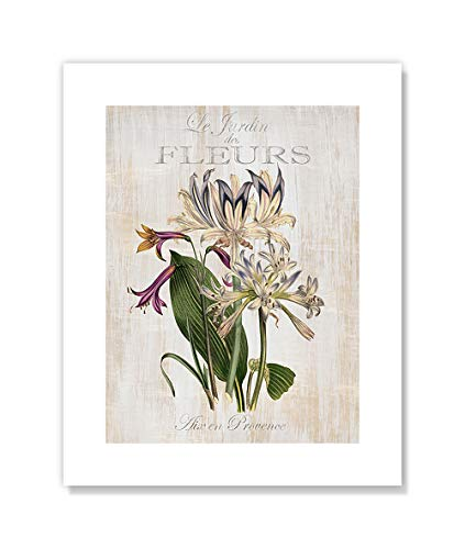 Casa Fine Arts Le Jardin des Fleurs I French Vintage Botanical Wall Art Archival Print, 8