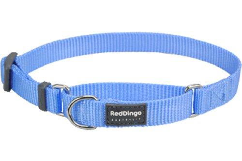 Red Dingo Classic Martingale Dog Collar, Medium, Mid-Blue