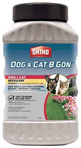 Ortho Dog And Cat