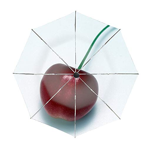 Cherry Food Berry Twig Tasty Travel Umbrella Reinforced Canopy, Ergonomic Handle ()