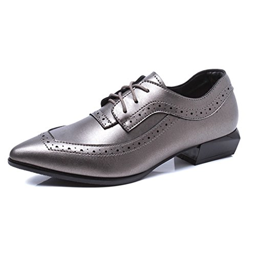 Hoxekle Womens Pointed Tenen British Style Shoes / Perforated / Vintage Oxford Shoes Low Heel Grey