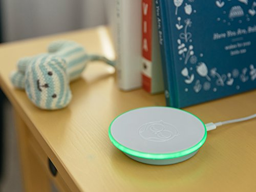 Owlet Smart Sock 2 Baby Monitor - Track Your Infant's Heart Rate & Oxygen Levels by Owlet (Image #3)