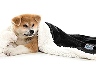 """KritterWorld Pet Dog Cat Puppy Kitten Microplush Sherpa Snuggle Blanket for Couch, Car, Trunk, Cage, Kennel, Dog House, 45"""" x 30"""""""