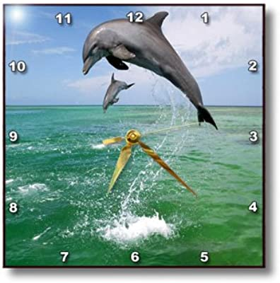3dRose dpp_180615_1 Image of High Jumping Florida Dolphins-Wall Clock, 10 by 10-
