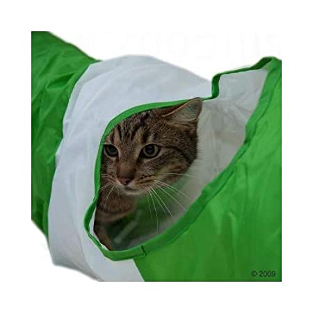 Tigerino Crystals Arena de Silicona para Gatos, Paquete de 6 ...