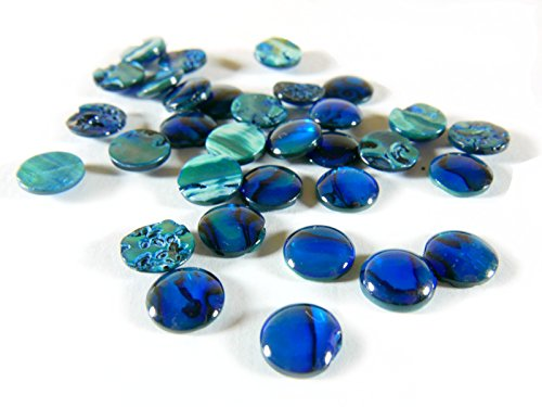 Round Shell Resin Cabochon 3 4 5 6 8 10 12 14 16 mm Abalone Mother of Pearl Tahiti Pearl Shell (Blue Dyed Paua Abalone, 10mm 20 Pieces)