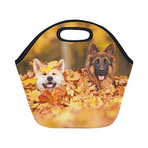 unch Bag Two Dogs Lying Leaves Large Size Reusable Thermal Thick Lunch Tote Bags For Lunch Boxes For Outdoors,work, Office, School ()