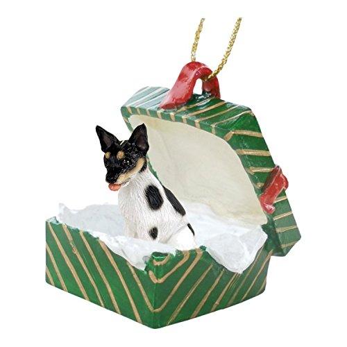 Conversation Concepts Rat Terrier Gift Box Green - Rat Terrier Figurine